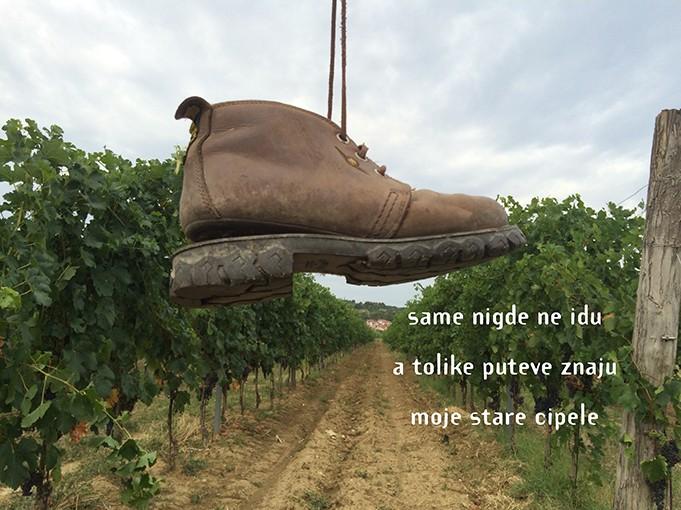CIPELE      shoes      ŠULNI  le ciabatte